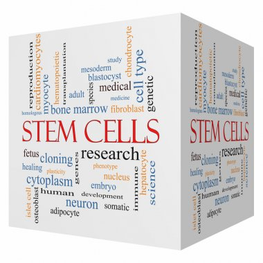 Stem Cells 3D cube Word Cloud Concept with great terms such as research, human, medical and more. stock vector