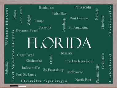Florida State Word Cloud Concept on a Blackboard