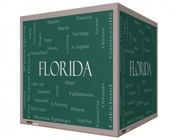 Florida State Word Cloud Concept on a 3D cube Blackboard