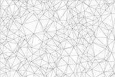 Hintergrund schwarz-weißes Polygon.