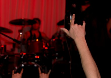 Audience at a rock concert giving the horns sign