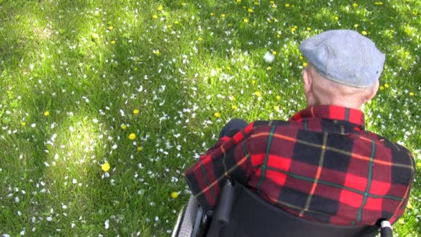 Old man in wheelchair enjoying spring in the park