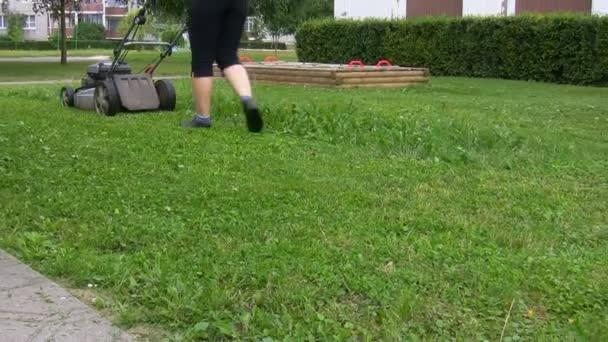 žena sekání trávníku