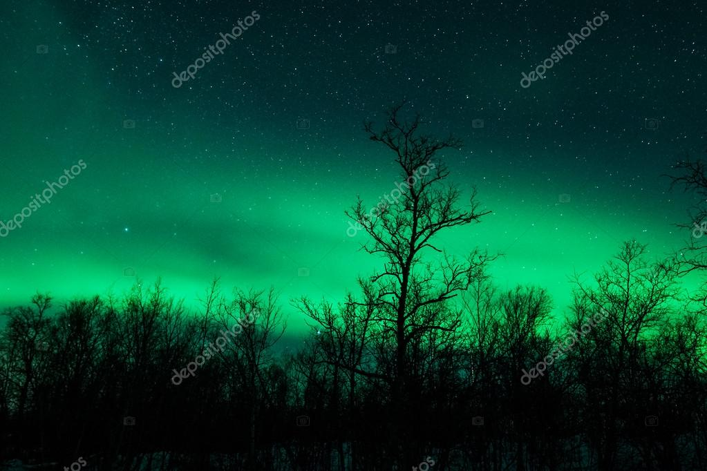 northern lights in sweden aurora borealis stock photo jamenp