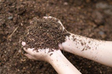 Soil in farmer arms