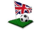 angol foci