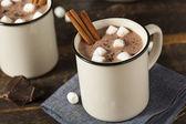 Photo Gourmet Hot Chocolate Milk