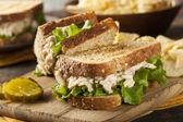 zdravá tuňákový sendvič se salátem