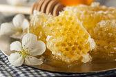 Fotografie Organic Raw Golden Honey Comb