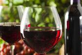Fotografie Osvěžující červené víno ve sklenici