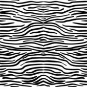 Fotografie Zebra skin texture seamless pattern, vector