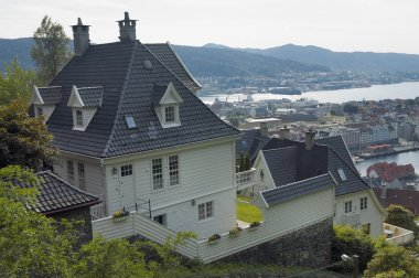 "Картина, постер, плакат, фотообои ""Дом в Бергене. Норвегия."", артикул 21216191"