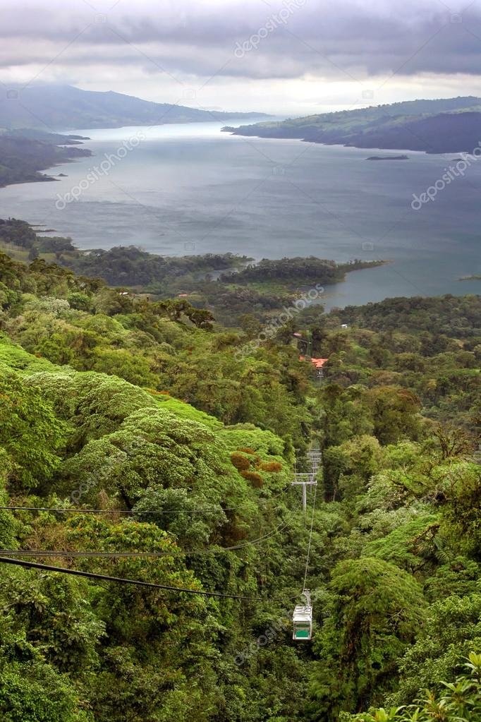 Tropical Rain Forest Canopy Tram