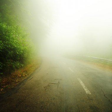 Road to the mist