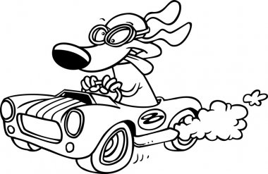 Cartoon pig racing a hot rod black and white outline