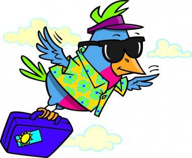 Cartoon Snowbird