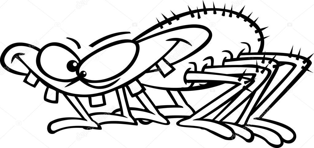 Vektör Bir Karikatür Dişlek örümcek Anahatlı Boyama Sayfası Stok