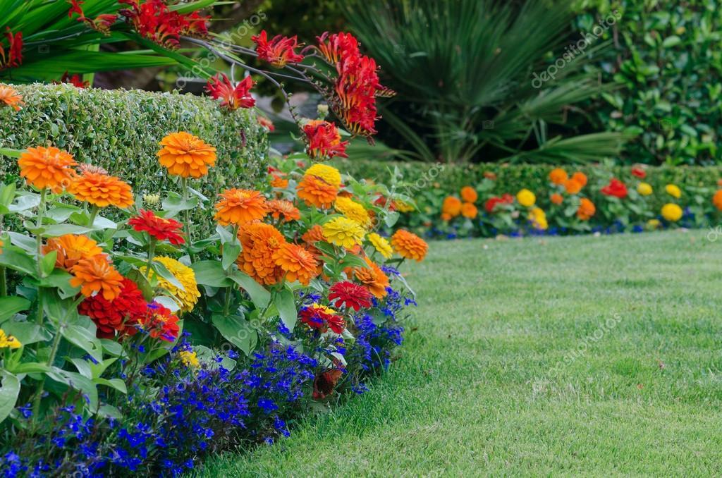 Dettaglio giardino colorato u2014 foto stock © jamiehooper #28076655