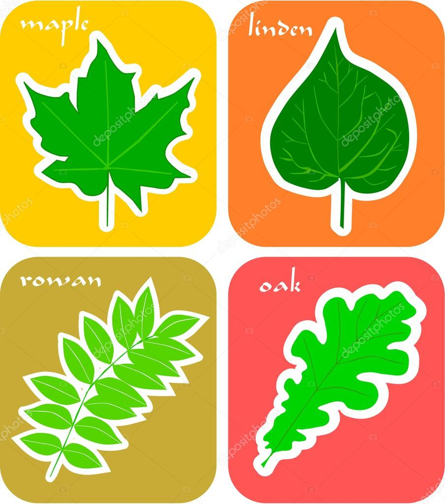 Cut-out leaf stickers for toddler book