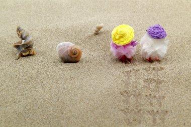 Coppia di pulcini sulla spiaggia