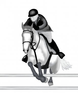 Equestrian : A Professional Equestrian Show Jumping