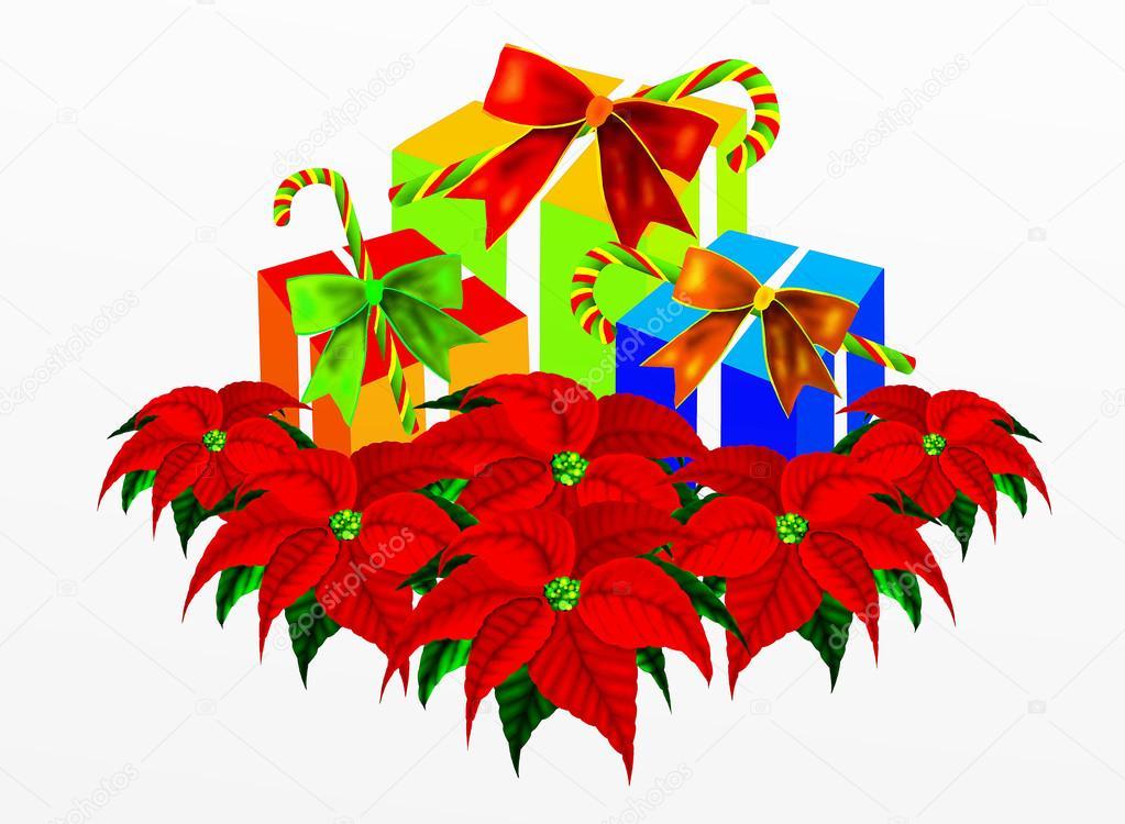 Flores de pascua navide as con las cajas de regalo y - Imagenes flores de navidad ...