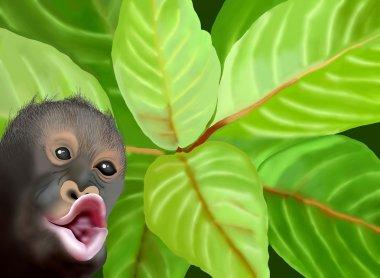 A Chimpanzee Monkey on Green Leaves Background