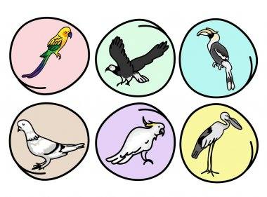 An Illustration Set of Beautiful Wild Birds