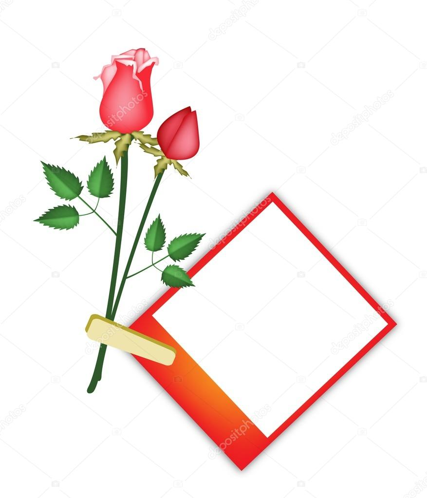 Two Beautiful Red Roses with Blank Photos