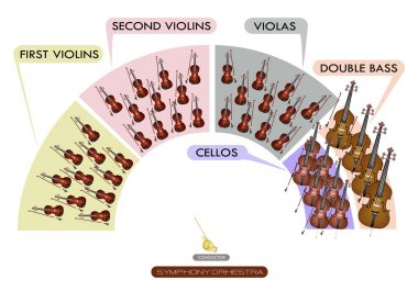 Diagram of String Instrument for Symphonic Band