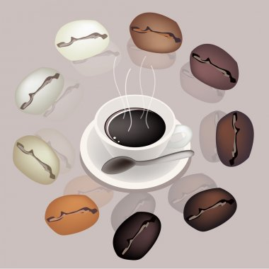 Differrent Coffee Beans Around A Coffee Cup