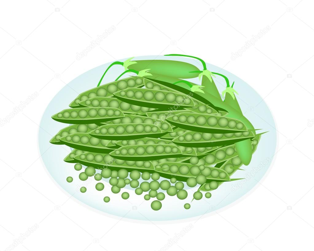 Delicious Sweet Green Pea in White Plate