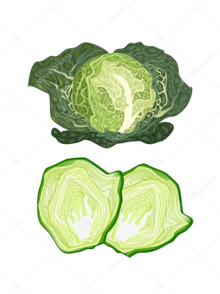 Fresh Green Savoy Cabbage on White Background