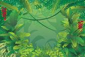 exotické tropický prales