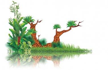 Exotic swamp