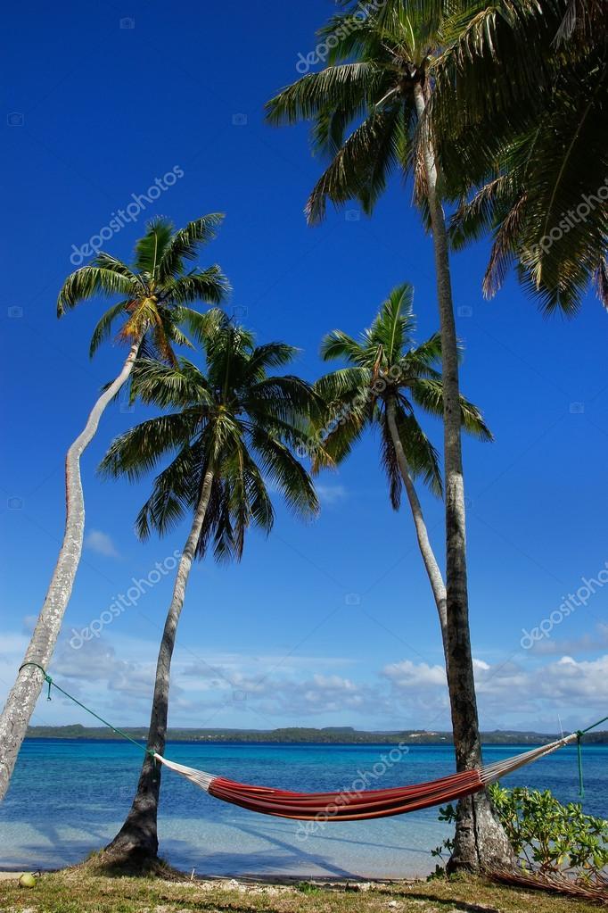 Colorful hammock between palm trees, Ofu island, Vavau group, To