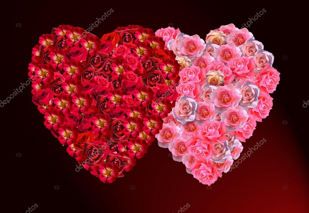 Красивые картинки любовь цветы