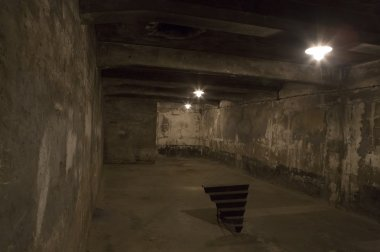 Auschwitz-Birkenau camp, Poland. The nazi gas chamber
