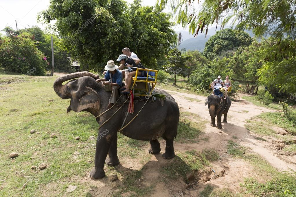 Unidentified tourists riding elephant in Samui jungle Thailand