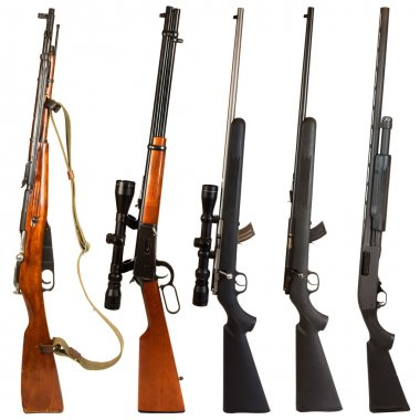 Rifles isolated on white background depicting a Russian bolt action Mosin Nagant, 30-30 Winchester lever action rifle, 22. bolt action rifle with scope, 22. bolt act stock vector