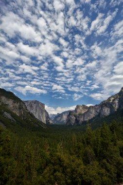 Mountain Range in Yosemite