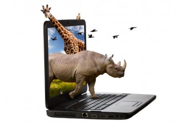 Animals Coming Out of a Laptop Screen