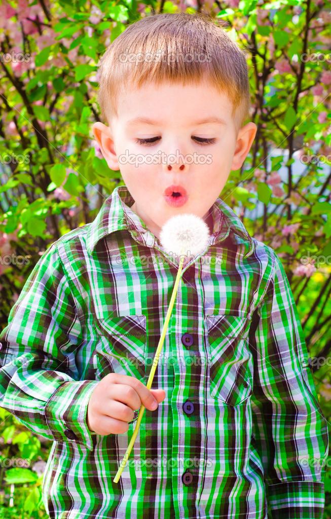 Portrait of cute boy blowing on a dandelion