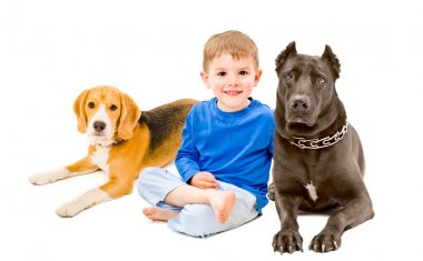 Portrait of beautiful boy sitting with two dogs