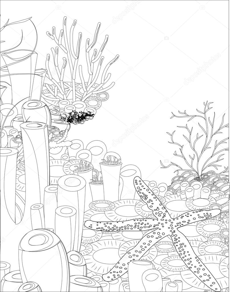 starfish with corals. coloring book
