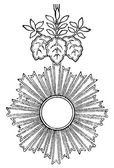 Fotografie Order of the Rising Sun (Japan, 1875). Publication of the book Meyers Konversations-Lexik on, Volume 7, Leipzig, Germany, 1910