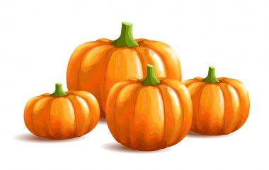 Bunch of pumpkins on white background