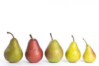 A Row of Assorted Pears Isolated on White