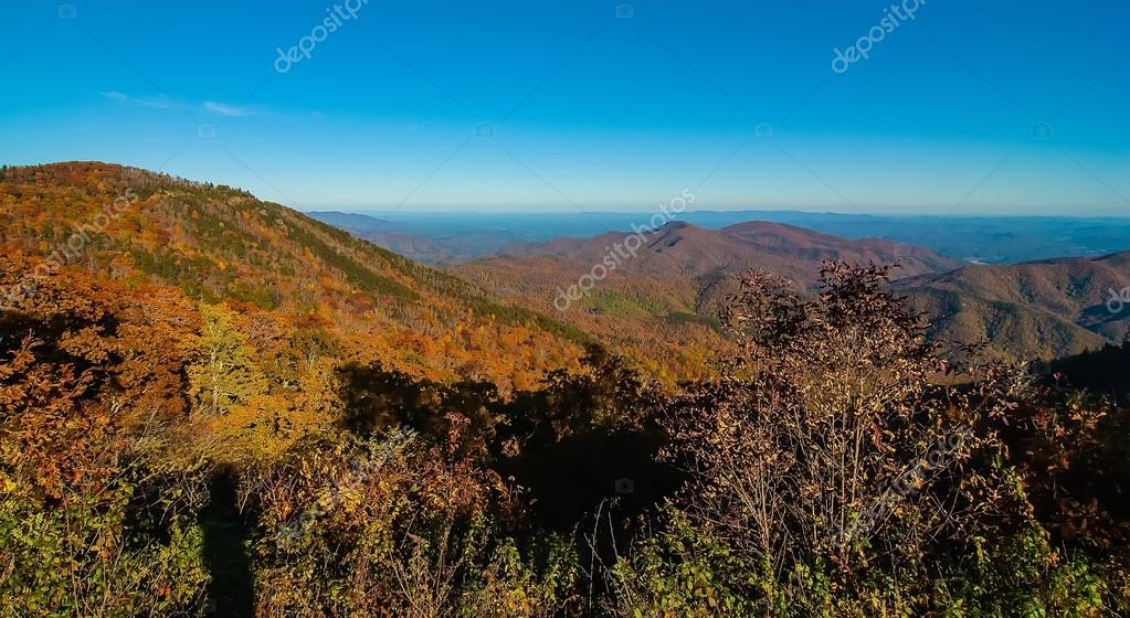 mount mitchell chat Answer to select the region where mount mitchell is found: a : appalachian highlands b : coastal plains c : great plains.