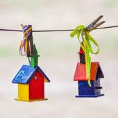 Fotografia casette per uccelli colorati